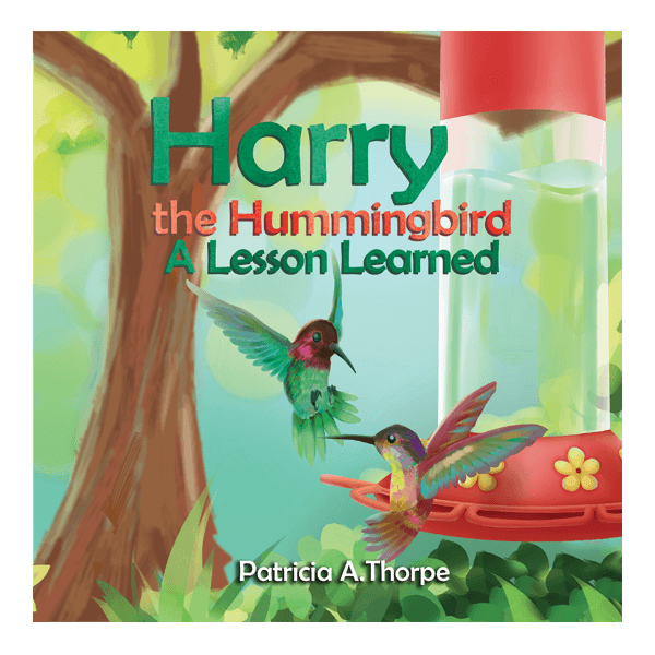 Harry the Hummingbird: A Lesson Learned