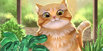 Children's Book / Picture Book